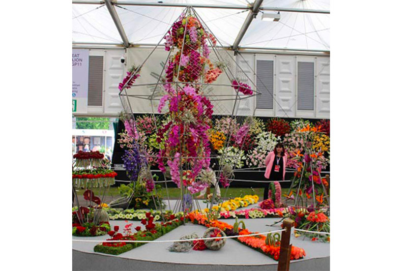 Silver Gilt Win at RHS Chelsea photo